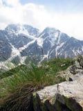 在高加索山脉的美丽如画的看法 adyr高加索elbrus峡谷湖山区域su 俄罗斯,卡巴尔达-巴尔卡里亚 免版税库存图片