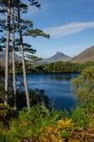 在高地(苏格兰)的风景 免版税库存照片