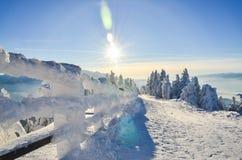 在高处的滑雪倾斜 库存照片