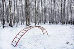 在高大的树木中的操场在雪下 梯子盖与 免版税库存照片