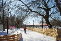在高尔基公园供以人员滑冰在莫斯科 库存照片