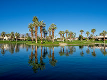 在高尔夫球场浇灌特点在Jw马里奥特沙漠春天 库存图片