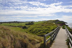 在高尔夫球场海滩哼声的桥梁 库存图片