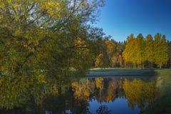 在高尔夫球场的一美好的秋天天 免版税库存照片