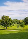在高尔夫球场的夏天 免版税图库摄影
