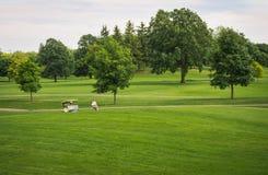 在高尔夫球场的夏天 库存图片