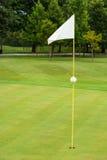 在高尔夫球场的白旗 图库摄影