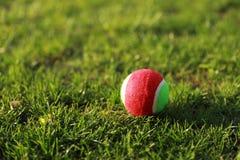 在高尔夫球场绿草纹理的高尔夫球背景的 库存图片