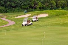 在高尔夫球领域的完善的波浪草 库存图片