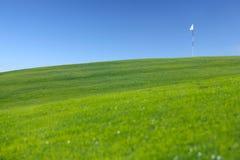 在高尔夫球领域的旗子 库存图片