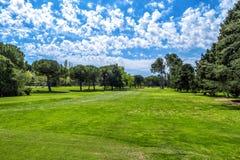 在高尔夫球领域的绿草在晴天 免版税库存照片