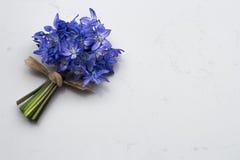 在高尚的卡拉拉石英的春天蓝色野花Scilla花束 库存图片