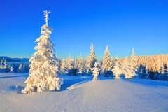 在高山中的一冷淡的美好的天 库存图片