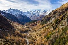 在高山的秋天颜色 在背景中有Gran Paradiso小组 科涅谷,奥斯塔意大利 图库摄影