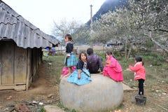 在高山的种族孩子 库存图片