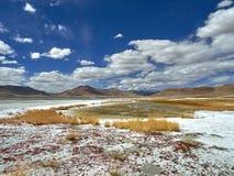 在高山盐湖Tso Moriri,岩盐和黄色草白色果皮的秋天,在一座山的背景中在b下 库存图片