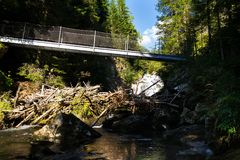 在高山足迹的人行桥通过地狱峡谷,施拉德明,奥地利 免版税库存照片