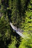 在高山足迹的吊桥通过地狱峡谷,施拉德明,奥地利 免版税库存照片