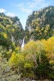 在高峭壁和秋天树的瀑布 库存图片