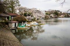在高松公园,盛冈,岩手, Tohoku, April27,2018的日本的樱花节日:水自行车和明轮船有樱桃树的 库存图片