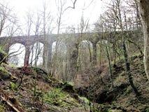 在高架桥下的谷 库存图片