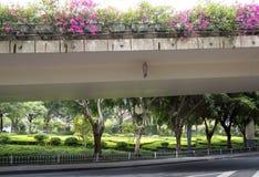 在高架桥视图下的室外风景设计 免版税库存图片