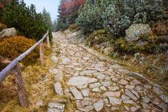 在高秋天山的石道路 免版税库存照片
