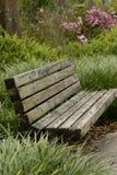 在高草的公园长椅 免版税库存图片