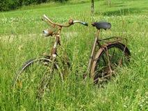 在高草的生锈的老自行车 库存图片