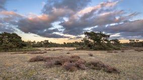 在高费吕韦国家公园的日落 库存图片