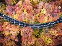 在高速公路低谷的繁忙运输有在堵车困住的汽车的森林 免版税库存照片