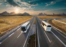 在高速公路的两辆孤立公共汽车在田园诗晴朗的早晨 免版税库存图片