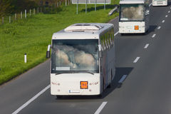 在高速公路的两辆白色公共汽车晴天 免版税库存照片