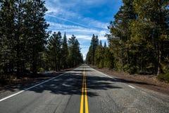 在高速公路的天空蔚蓝通过森林在加利福尼亚,距离的沙斯塔山 免版税库存照片