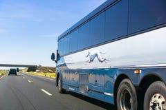 在高速公路的灵狮公共汽车 库存图片