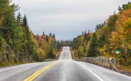 在高速公路60的降雨量在阿尔根金族公园 免版税库存图片