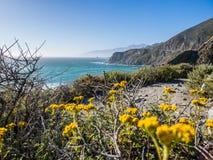 在高速公路1,大瑟尔,加州的美丽的景色 免版税库存照片
