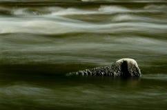 在高水流量期间的河Goyt 采取以一张缓慢的快门速度使水的流程平滑象仓促  新的磨房 库存照片