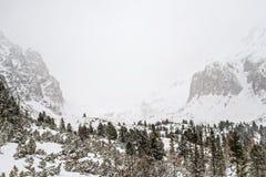 在高Tatras山的冬天 免版税库存照片