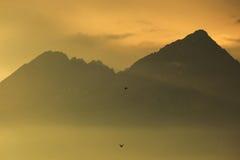 在高Tatras山的日落 免版税图库摄影
