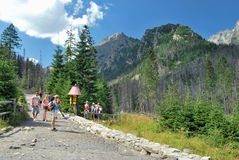 在高Tatras的体育 免版税库存照片