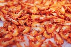 在鱼市上的许多桃红色虾 免版税图库摄影