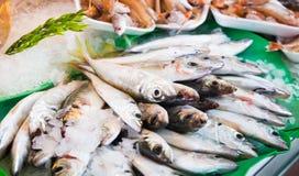 在鱼市上的鱼 库存图片