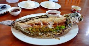 鱼烧泰国样式 免版税库存照片