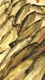 在鱼贩子摊位的鳟鱼 库存照片