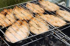 在鱼kebab之上 免版税库存照片