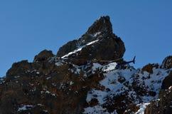 在鲁阿佩胡山上的直升机飞行在东格里罗国家公园 免版税图库摄影