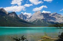 在鲜绿色湖,不列颠哥伦比亚省的夏令时 库存照片