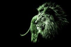 在鲜绿色的颜色的狮子画象 免版税库存照片