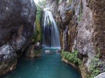 在鲜绿色河的瀑布 库存图片